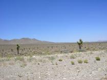 Camino de Nevada a Sierra Nevada, CA Fotos: Movaldi´s © All Rights Reserved