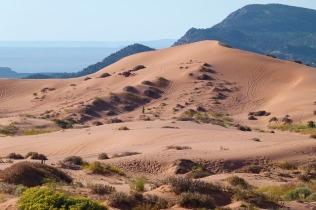 pink-sand-dunes-208856_640