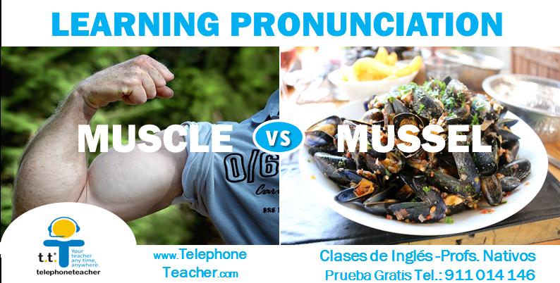 Aprendiendo pronunciación: Muscle-Mussel