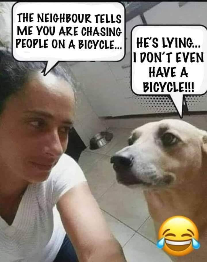 Friday Funny: Joke