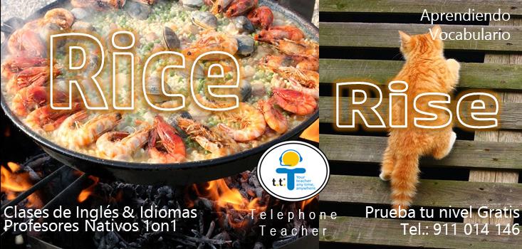 Rice vs Rise