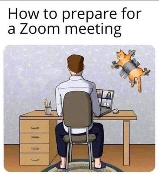Cómo prepararse para una tele-conference